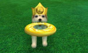 dogs0755.jpg