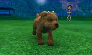 dogs0760.jpg