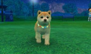 dogs0769.jpg