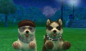 dogs0776.jpg