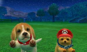 dogs0778.jpg