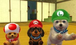 dogs0779.jpg