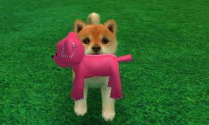 dogs0782.jpg