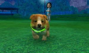 dogs0783.jpg