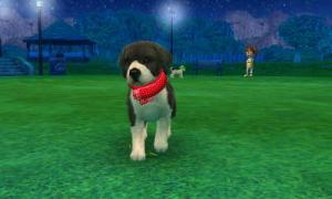 dogs0785.jpg