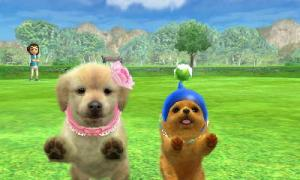 dogs0793.jpg
