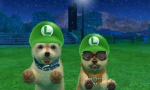 dogs0795.jpg