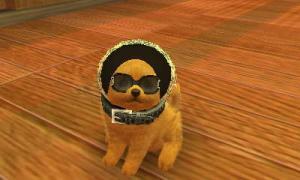 dogs0799.jpg