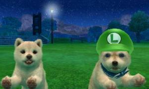 dogs0807.jpg
