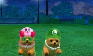 dogs0808.jpg