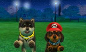 dogs0816.jpg