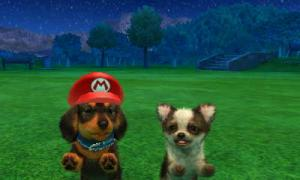 dogs0821.jpg