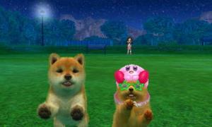 dogs0822.jpg