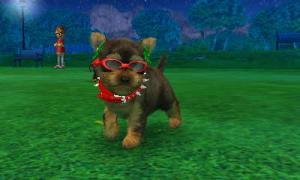 dogs0823.jpg