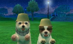 dogs0825.jpg