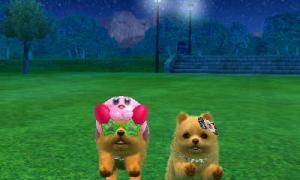 dogs0828.jpg
