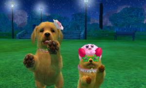 dogs0834.jpg