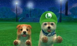 dogs0837.jpg