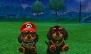 dogs0839.jpg
