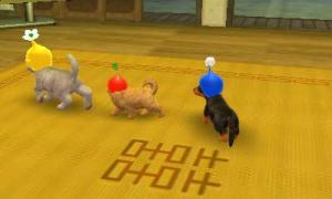 dogs0845.jpg