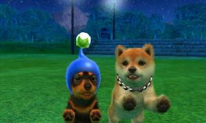 dogs0848.jpg