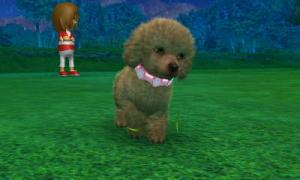 dogs0849.jpg