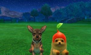 dogs0850.jpg