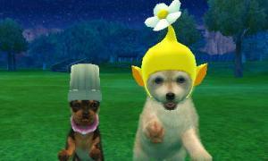 dogs0852.jpg