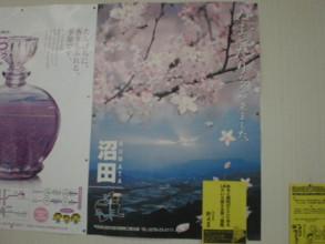 NUMATA46.jpg