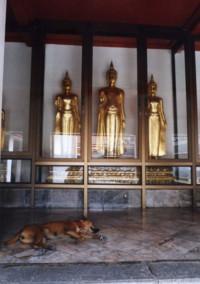 Wat-Pho16.jpg