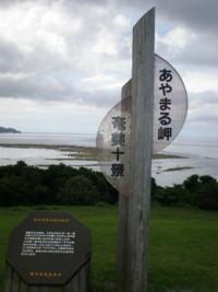 amamiooshima29.jpg