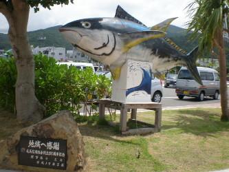 amamiooshima38.jpg