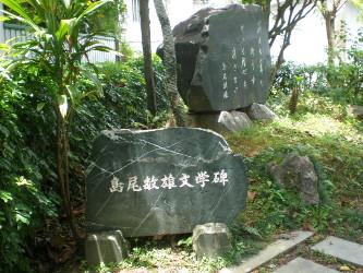 amamiooshima41.jpg