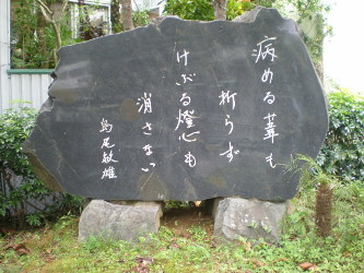 amamiooshima42.jpg
