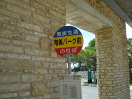 amamiooshima8.jpg