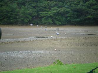 kakeroma-golf3.jpg