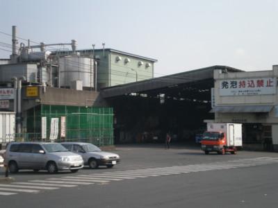 tukiji4.jpg