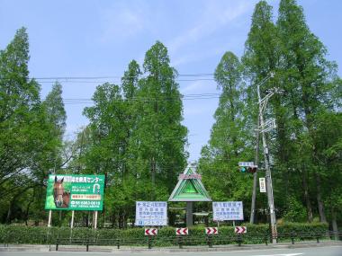 服部緑地3