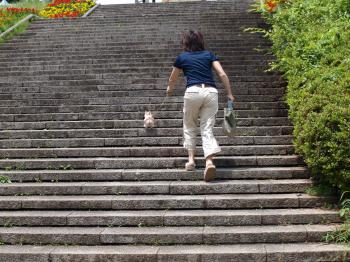 7月2日ちいちゃんと階段
