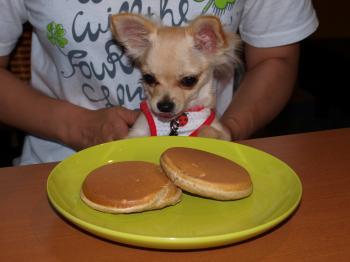 7月19日パンケーキとメイ