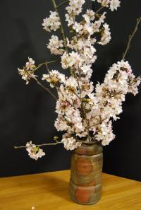 花器と桜_convert_20090329231430