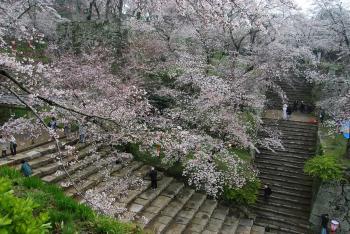090405鶴山公園1convert_20090406230730