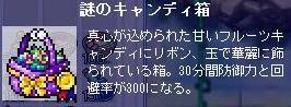 20080629 (12)
