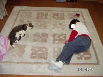 ちびぞうおにいちゃんとお昼寝