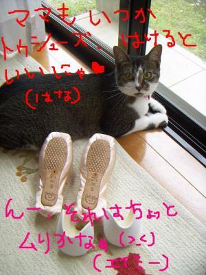 20060709141212.jpg