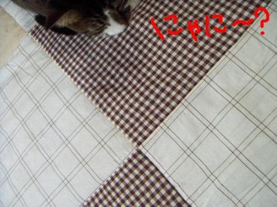 20061016094251.jpg