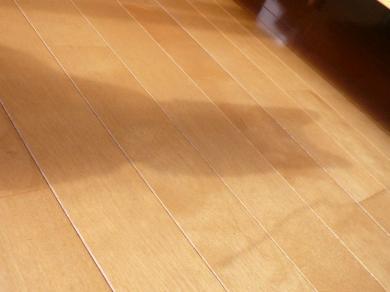 くーちゃん・・・ う、うすい(>_<)