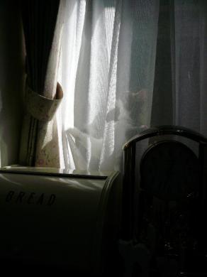 光と影がいいかんじ。。。