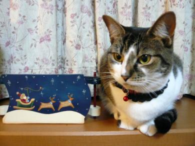 今年は サンタさんの絵のそりとならんで・・・♪