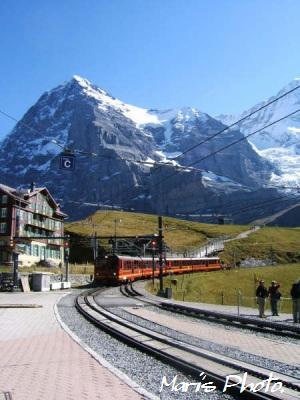 Swiss2.jpg